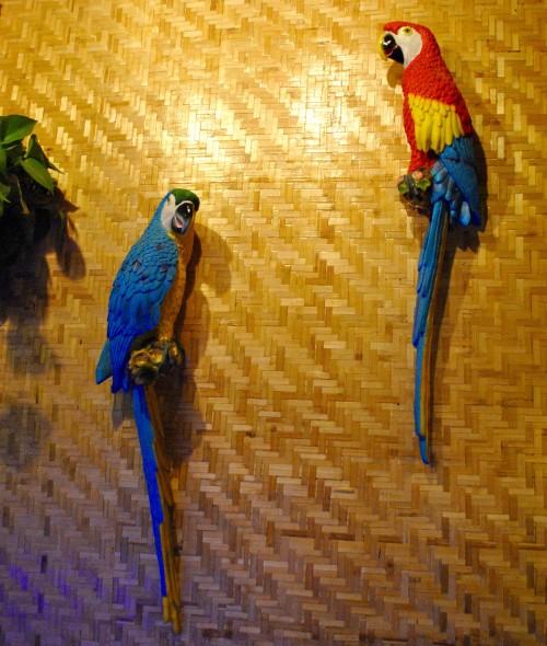 Bungalow parrots