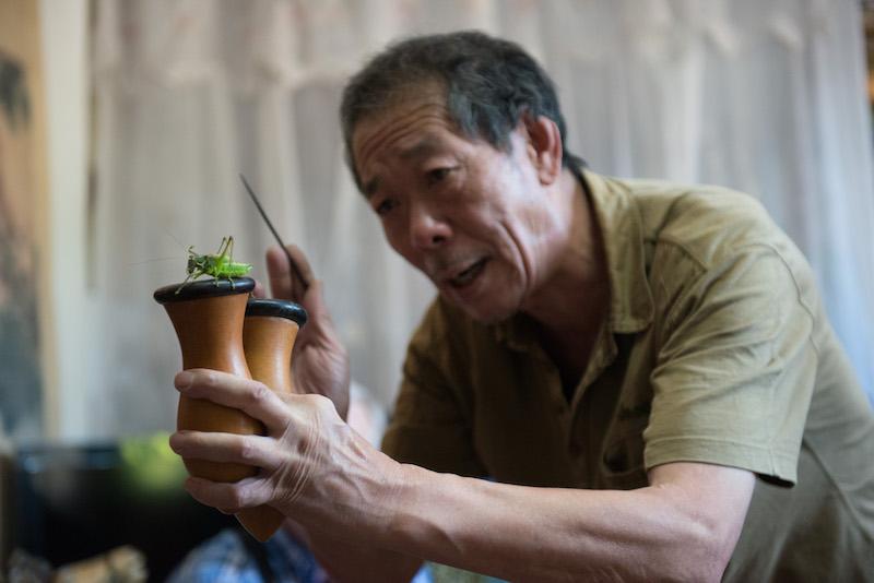 Bespoke beijing hutong tour cricket man